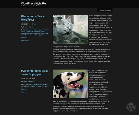 Тема WordPress ChaosTheory