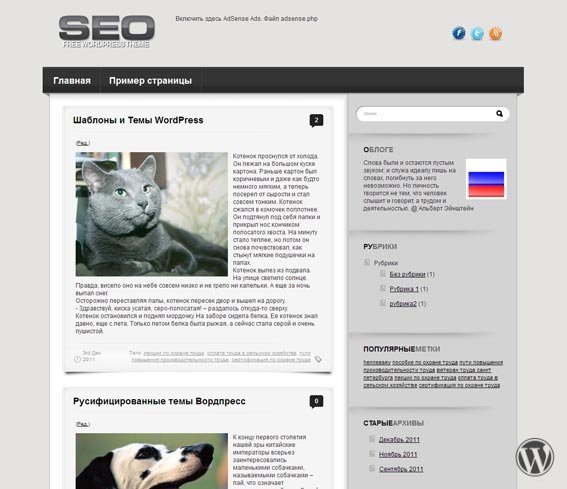 WordPress шаблон SEO для блогов