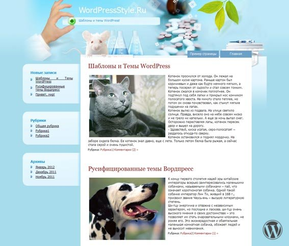 Светлая медицинская тема для WordPress Health