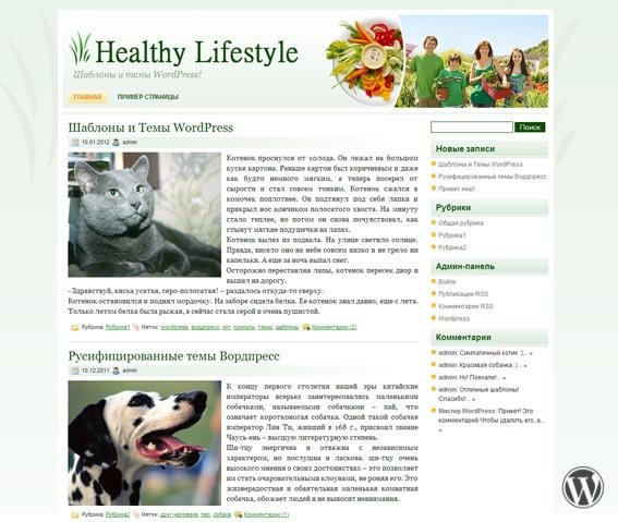Вордпресс тема Healthy Lifestyle 2.0